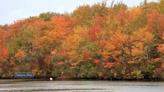 Richard Clayderman - Les Feuilles Mortes (Autumn Leaves)