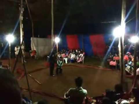 Circus Pasipiya