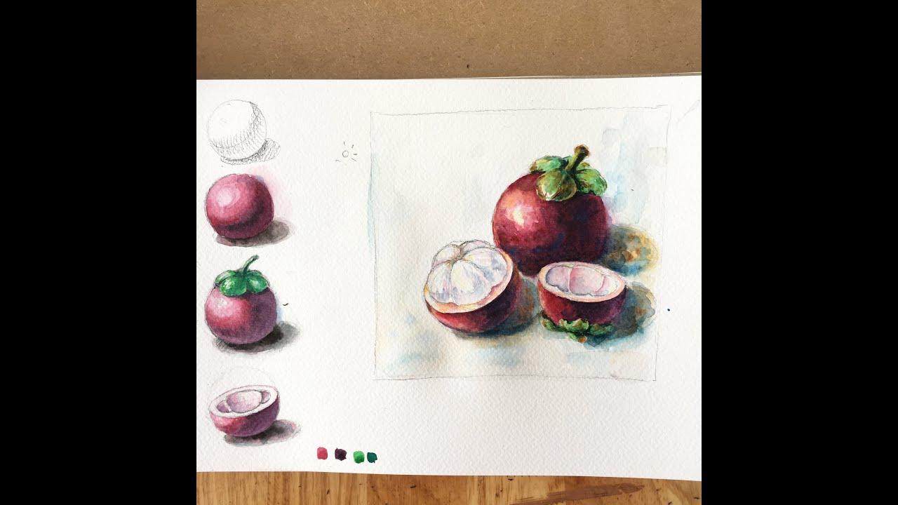 How to draw and paint watercolor/ mangoteen/ vẽ màu nước trái măng cụt