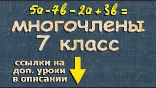 алгебра МНОГОЧЛЕНЫ математика 7 класс