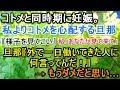 hisaiyan - YouTube