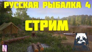 Русская рыбалка 4 Стрим За трофеем Закрываем водоемы