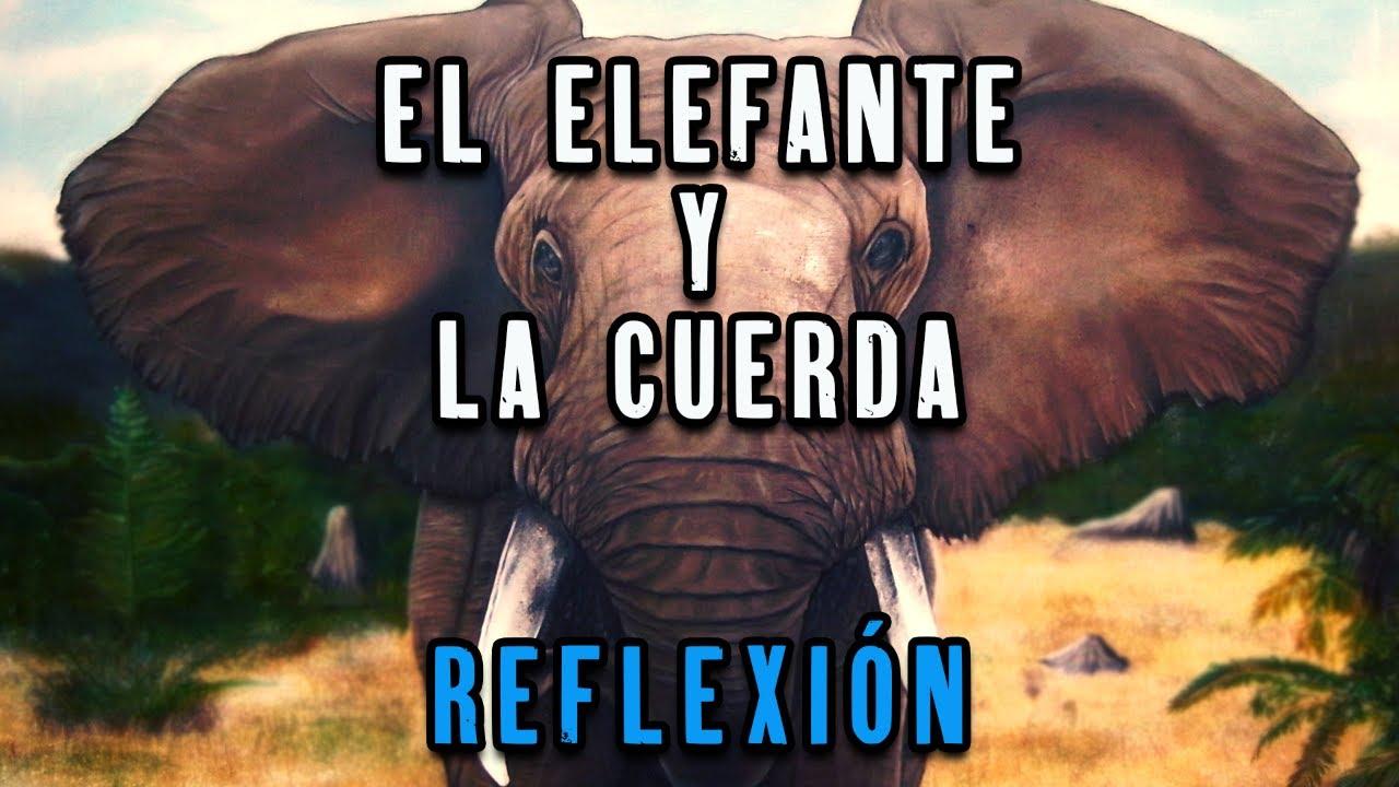 La Cuerda y El Elefante reflexiones de vida, amor y paz, grandeza de Dios, como ser mejor persona