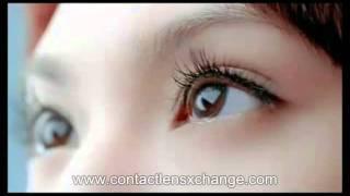 buy cibavision focus dailies all day comfort 激安 コンタクトレンズ通販  눈건강을