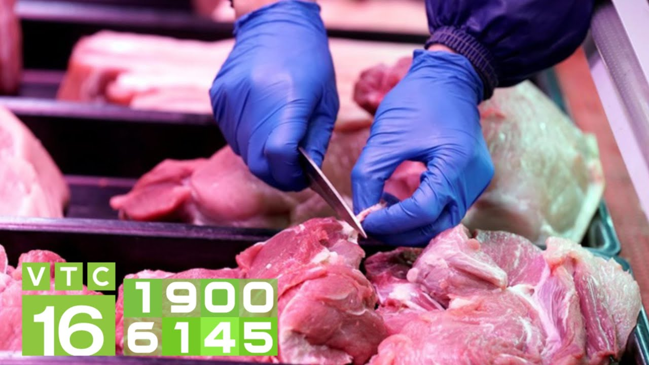 Khi nào người dân mua được thịt lợn giá rẻ? | VTC16