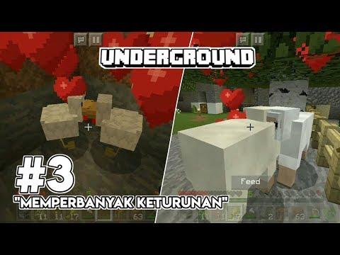 underground-:-musim-kawin!!---mcpe-survival-indonesia-#3