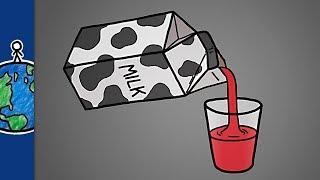 Молоко - это отфильтрованная кровь [MinuteEarth]