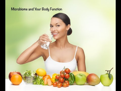 Chiropractor Near me Maryville Marsh Chiropractic: Microbiome & Your Body Function