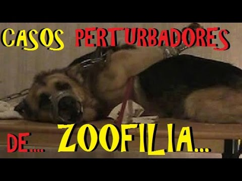 Top: Los 6 Casos de Zoofilia, más perturbadores de la historia. thumbnail