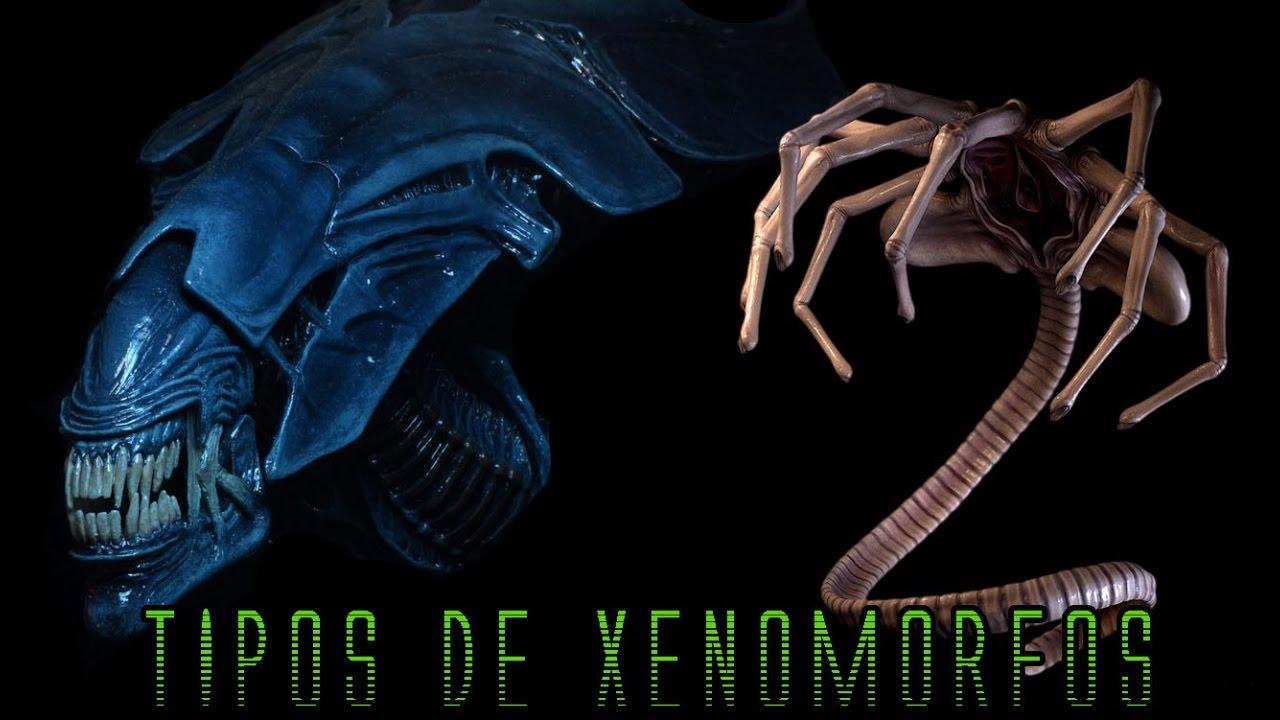 TIPOS DE XENOMORFOS DENTRO DE UNA COLMENA (ALIENS) - MaxiLunaPMY