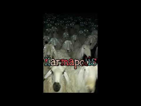 karmapolis capitulo 1