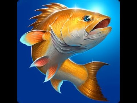 Download لعبة صيد السمك fishing hook علي الكمبيوتر برنامج koplayer.mp4