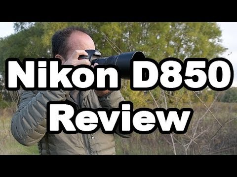 Nikon D850 Review For Wildlife, Landscape, and Nature Photog