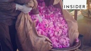Where to Go to in India: Flower Markets
