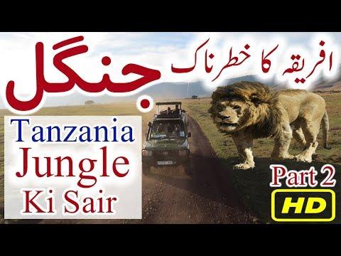 Tanzania Jungle Documentary Urdu Hindi Tanzania Tourism Dunya Ki Sair EP 11 Part 2