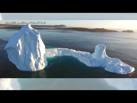 Iceberg in Newfoundland draws hundreds of tourists