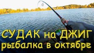 Судака на джиг в жовтні! Рибалка на спінінг!