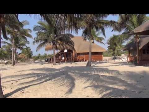 Mozambique Reality Check