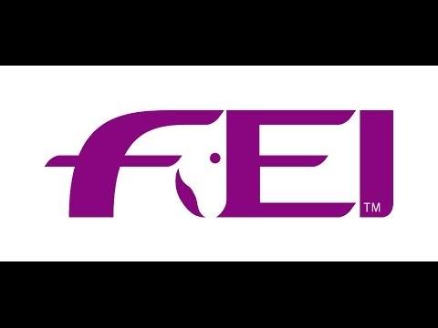 REPLAY: FEI World Cup™ Final Lyon - CSI2* PRIX RIO MOQUETTE
