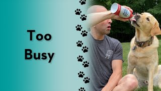 OMG! This is the best activity to do with your dog! Have you tried it?