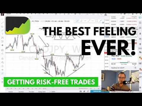 FOREX TRADER'S BEST FEELING