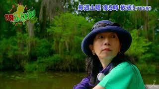 土曜よる9時 『世界ふしぎ発見!』 7月7日放送ミステリーハンター・アメリ...