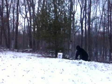 REAL BIGFOOT FOOTAGE FROM CANADA