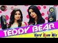 Teddy Bear DJ mix (desi DJ night club ) new Bollywood song