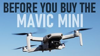 Before You Buy The Mavic Mini | Should You Buy One? | DansTube.TV