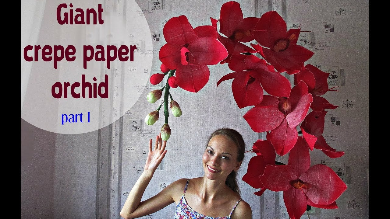 giant paper orchid part 1 english subtitles youtube