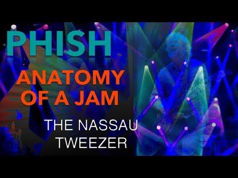 Phish - Anatomy of a Jam - 2.28.03 Tweezer - Nassau Coliseum