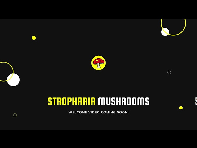 Welcome To Stropharia Mushrooms