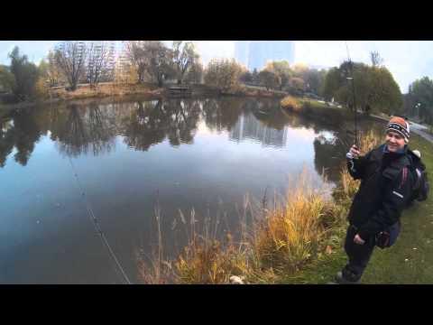 борисовские пруды рыбалка на спиннинг