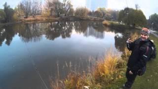 Окунь на микроджиг. Рыбалка на Борисовских прудах и не только. 12.10.2014.