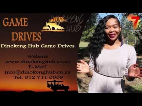 Game Drives - Dinokeng Hub