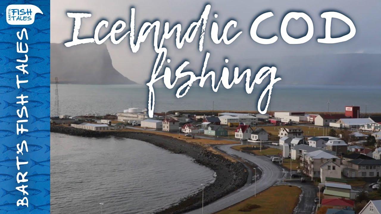Icelandic Cod Fishing   Bart van Olphen