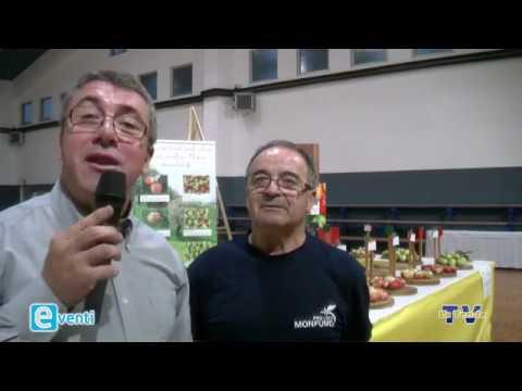 EVENTI - Monfumo: 35a Festa della mela