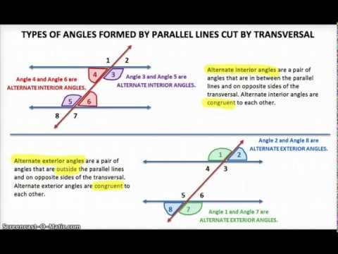 Types of Angles formed by Parallel Lines cut by a Transversal