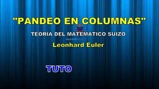 PANDEO EN COLUMNAS Tutorial 4 (Teoría de EULER)