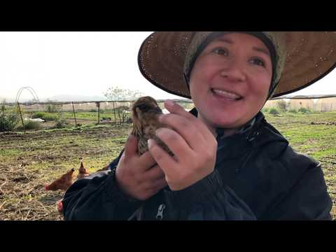 Farmland for the Next Generation - McGrath Family Farm