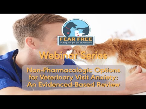 Non-Pharmacologic Options For Veterinary Visit Anxiety: An Evidenced-Based Review