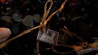 Magical Eucalyptus Bundles Healing and Protective Energies Thumbnail