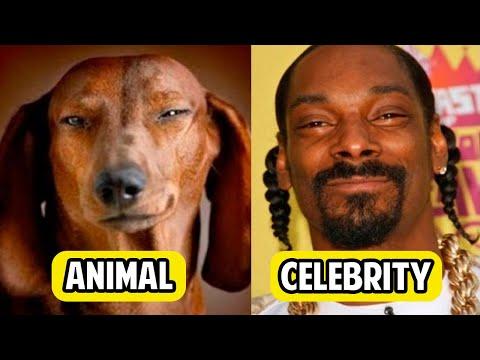 15 ANIMALS That Look Like CELEBRITIES