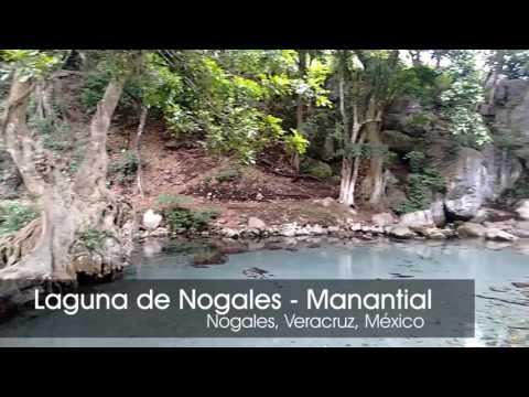 Laguna de Nogales - Manantial