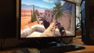 hp omen 32in 75hz monitor test    battlefield 1 multiplayer ps4