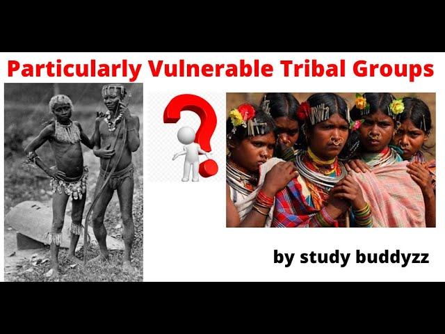 What are Particularly Vulnerable Tribal Groups? | PVTG | For UPSC PSC SSC 2020