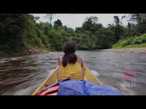 Mountain Travel Sobek Presents: Wild Borneo