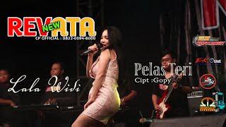 Download PELAS TERI - LALAWIDI - NEW REVATA - KOPI LANGIT AUDIO
