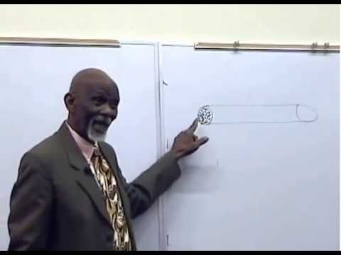 dr.-sebi-on-impotency-and-diabetes-preventing-erectile-dysfunction-&-improving-your-performance