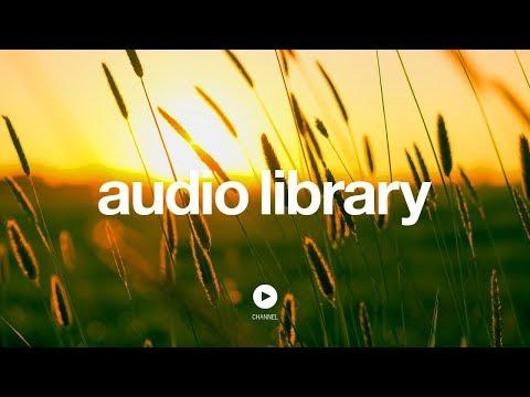 SERENITY - Jason Shaw (No Copyright Music)